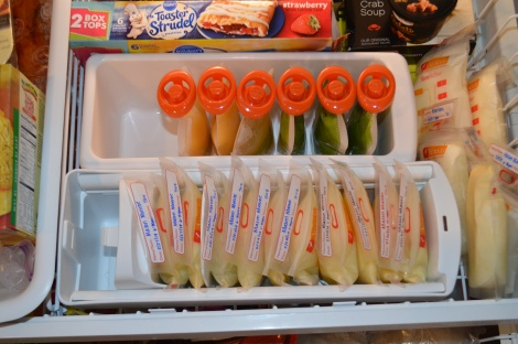 Breastmilk and Baby Food Freezer Storage